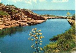 SICILIA PITTORESCA - MARSALA - Isola Di Mozia - Porto Fenicio - Marsala