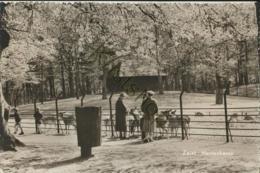 Zeist - Hertenkamp [AA25 1.641 - Ohne Zuordnung