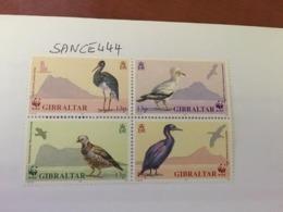 Gibraltar Endangered Birds Block 1991 Mnh - Gibraltar