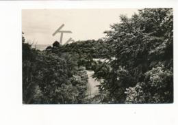 Berg En Dal - Panorama [AA25 1.923 - (gelopen Met Pz) - Niederlande