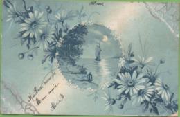 CPA Voilier + Fleurs Circulée 1904 - Cartes Humoristiques