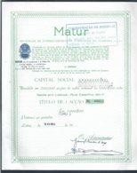 Titulo De Uma Ação Da Matur - Soc. Empreendimentos Turísticos Da Madeira. Matur, Machico, Madeira. - Turismo