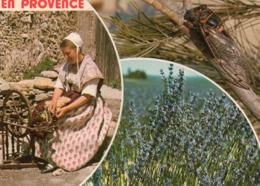 CPM - N1 - EN PROVENCE - CIGALE - LAVANDE - COSTUME - Provence-Alpes-Côte D'Azur