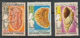 1982, Tunisie, Tunisia, Y&T N°966-967-969 Oblitérés- Fossiles, Fossils. - Fossils