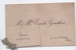 Petite Carte Faire-part De Naissance / Mr Et Mme Emile GAUTHIER / Lucien/Paris / 1897                        FPN11 - Nacimiento & Bautizo