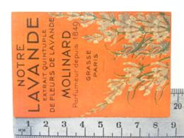 Carte Parfumée Parfum - Notre Lavande, Extrait Quintuple De Fleurs - MOLINARD - Parfumeur Depuis 1849 - Grasse Paris - Perfume Cards