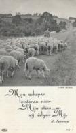 Non -maria Van Kerckhoven Met Drukfout Geboortedatum-marie Keukelinck - Imágenes Religiosas