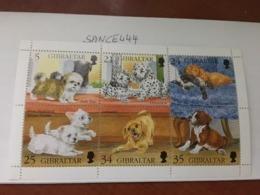 Gibraltar Dog Puppies S/s Mnh 1996 - Gibraltar