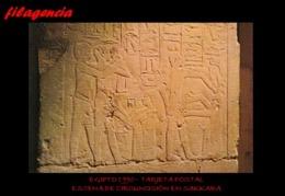 TRASTERO. EGIPTO. TARJETAS POSTALES. TARJETA POSTAL 1990. ESCENA DE CIRCUNCISIÓN EN SAKKARA. JEROGLÍFICOS EGIPCIOS - Pirámides