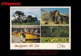 TRASTERO. CHILE. TARJETAS POSTALES. TARJETA POSTAL 1990. IMÁGENES DEL SUR DE CHILE. MONTAÑAS - Chile