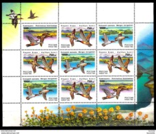 14645 Ducks - Canards - Russie - Minisheet - MNH - Free Shipping - 2,25 - Eenden