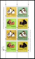 14645  Ducks - Canards - Birds - Poland - MNH - 2,50 (8) - Canards