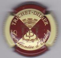 TRICHET-DIDIER N°10a - Champagne