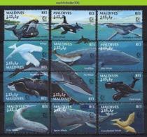 Nff095 FAUNA ZEEZOOGDIEREN WALVIS WHALE SEA MAMMALS BALEINES MARINE LIFE MALDIVES 1995 PF/MNH - Wale