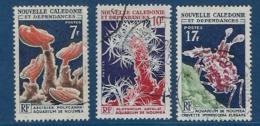 """Nle-Caledonie YT 322 à 324 """" Aquarium """" 1964-65 Oblitéré - Neukaledonien"""