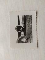 2WK Foto Britische Flugzeug Plane - 1939-45