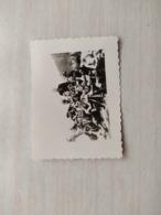 2WK Foto Nazi - 1939-45