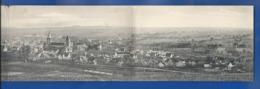 WEISSENBURG    Panorama  3 Cartes   écrite En 1919 - Wissembourg