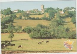 Orne : Env.  De TINCHEBRAY :  SAINT  CORNIER  Des  LANDES  :  Vue - Francia