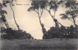 Nieuwpoort De Bomen , Les Arbres     L 1367 - Nieuwpoort