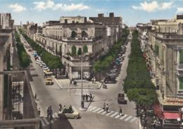 BRINDISI  /  Corso Roma E Umberto _ Viaggiata - Brindisi