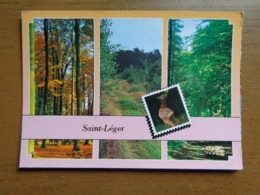 Bonjour De Saint Léger --> Beschreven - Virton