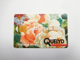 Télécarte Privée , 5U , Gn5 , Quelyd - Francia