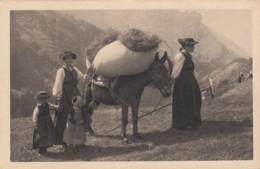 Paysans Et Paysannes Du Valais - TTB - VS Wallis