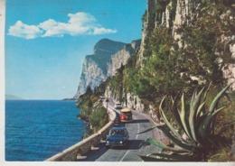 AUTO AUTOS CAR VOITURES  ALFA ROMEO GIULIETTA WOLKSWAGEN PULMINO - Passenger Cars
