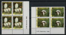 Niger 1985 Mushrooms Champignons Coins Datés  MNH - Paddestoelen