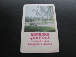 USSR Soviet Russia Pocket Calendar Nature Journal Merry Birch 1973 - Kalenders