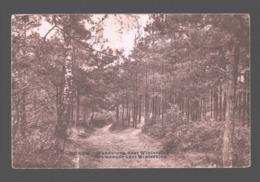 Genk / Genck - Wandelweg Naar Winterslag - 1941 - Genk