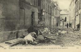 Militaria Guerre De 1914 Soissons Soisonnais Enlevant Les Harnais D'un Cheval Agonisant RV - Soissons