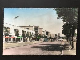 Carte Années 1950 Maubeuge Avenue De La Gare Avec Voitures Simca Aronde Dauphine - Maubeuge