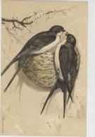 OISEAUX - Jolie Carte Fantaisie Hirondelles Près De Leur Nid - Oiseaux
