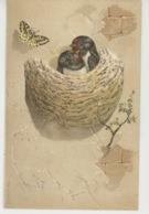 OISEAUX - Jolie Carte Fantaisie Hirondelles Dans Leur Nid Et Papillon - Oiseaux