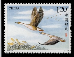 "China 2018-22 ""Wild Goose"" Bird Stamp  Original,Complete Set,MNH,VF - 1949 - ... People's Republic"