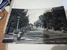 VITTORIA RAGUSA I GIARDINI- VB1959    HE553 - Vittoria