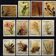 MBP-BK2-645 MINT ¤ GUYANA 12w MINT OUT OF SET- MINT - ¤ FLOWERS OF THE WORLD - ORCHIDEE - FLEURS BLÜMEN - Orchids