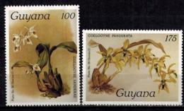 MBP-BK2-643 MINT ¤ GUYANA 4w MINT OUT OF SET- MINT - ¤ FLOWERS OF THE WORLD - ORCHIDEE - FLEURS BLÜMEN - Orchids