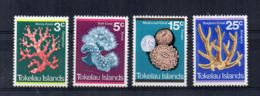 TOKELAU - 1973 - Coralli - 4 Valori - Nuovi - Linguellati * -  (FDC17190) - Tokelau