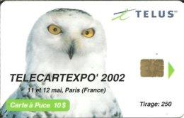 Canada: Tellus - TélécarteExpo Paris 2002, Owl - Canada