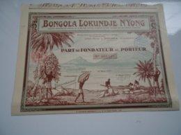 BONGOLA LOKUNDJE N'YONG (douala,cameroun) - Aandelen