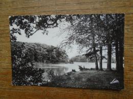 Paimpont , La Forêt , étang Des Forges - Paimpont