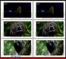 Ref. BR-V2019-22-B BRAZIL 2019 - ANIMALS, FAUNA, BRAZILIAN FAUNAL RICHNESS, , INSECTS, MONKEY, MANED SLOTH.BLOCK MNH,6V - Singes