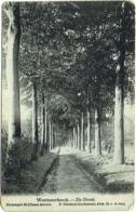 Westmeerbeek/Westmeerbeeck.  De Dreef. - Hulshout