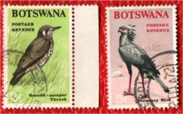 BOTSWANA - 1967 - UCCELLI - BIRDS - USATI - Botswana (1966-...)