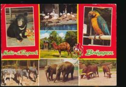 Brüggen - Natur-und-Tierpark -ZOO [AA46 0.190 - Germania