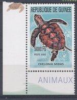 2010, Guinée Guinea, Neuf - Tortue Turtle - Schildkröten