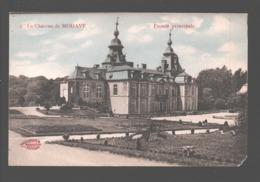 Modave - Le Château De Modave - Façade Principale - Colorisée - Modave